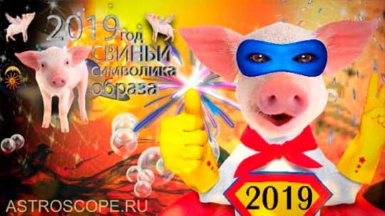 2019 год символ года Свинья