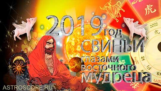 2019 год Свиньи глазами восточного мудреца