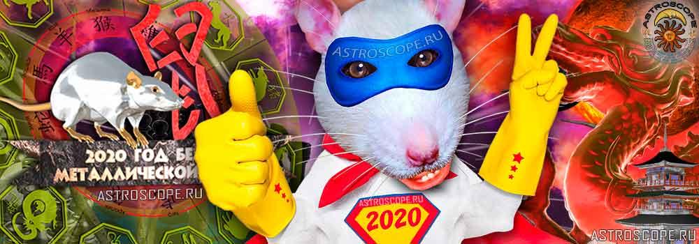 символ 2020 года крысы