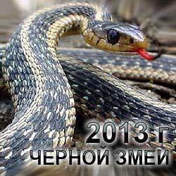 точный гороскоп на год змеи