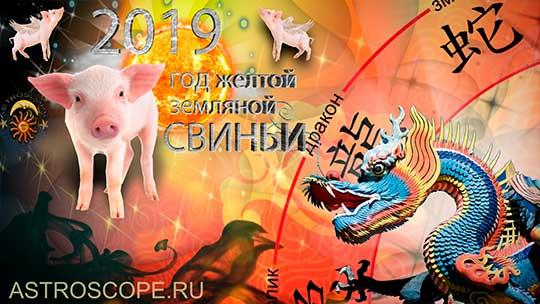 Дракон гороскоп на 2019 год Свиньи