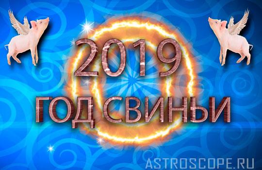 Гороскоп для мужчины Весы на 2019 год