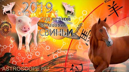 Лошадь гороскоп на 2019 год Свиньи