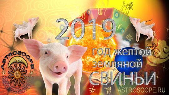 Гороскоп на 2019 год петух - КалендарьГода картинки