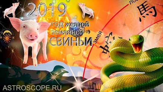 Змея гороскоп на 2019 год Свиньи
