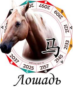 Гороскоп совместимости Лошади с другими знаками