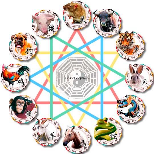 Лучшая совместимость по году рождения для знаков китайского гороскопа
