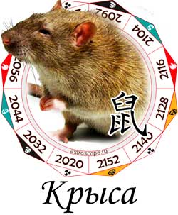 Гороскоп совместимости Крысы с другими знаками