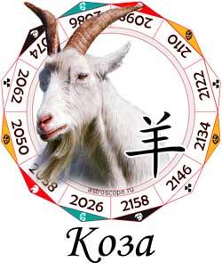 Гороскоп совместимости Козы с другими знаками