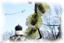 Православные праздники в апреле 2013 года, Вербное Воскресенье