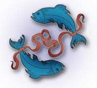 лилия под знаком гороскопа рыбы