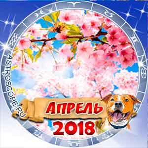 Гороскоп на апрель 2018 для всех знаков Зодиака