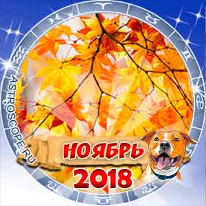 Гороскоп на ноябрь 2018 для всех знаков Зодиака