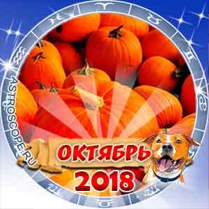Гороскоп на октябрь 2018 для всех знаков Зодиака