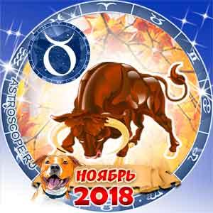 Гороскоп на ноябрь 2018 знака Зодиака Телец