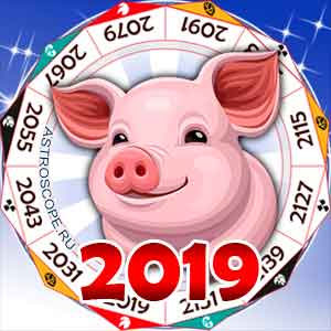 гороскоп на 2019 год Свиньи