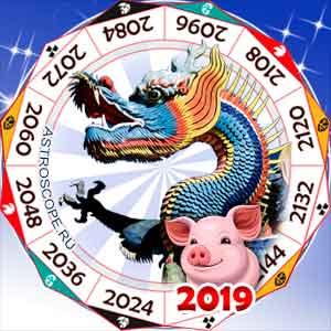 гороскоп для Дракона в 2019 год Свиньи