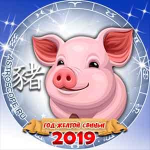 Всё про год 2019 | Год 2019 в 2019 году