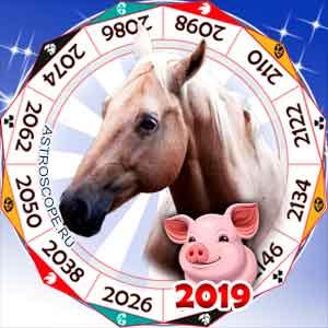 гороскоп для Лошади в 2019 год Свиньи