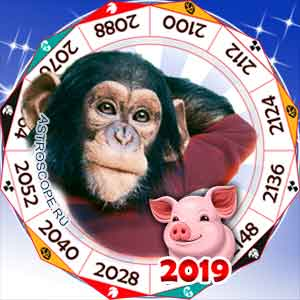 гороскоп для Обезьяны в 2019 год Свиньи