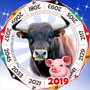 гороскоп для Быка в 2019 год Свиньи