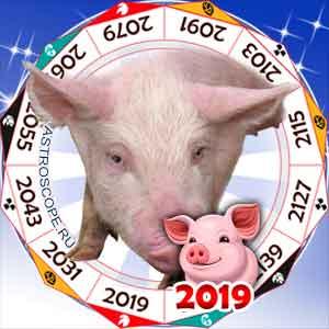 гороскоп для Свиньи в 2019 год Свиньи
