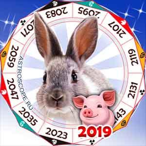гороскоп для Кролика в 2019 год Свиньи