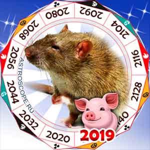 гороскоп для Крысы в 2019 год Свиньи