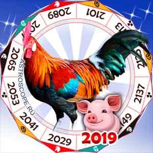 гороскоп для Петуха в 2019 год Свиньи