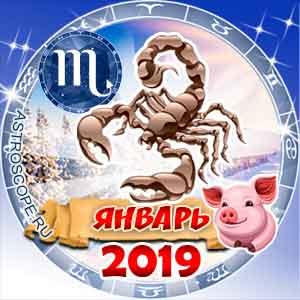 Гороскоп на январь 2019 знака Зодиака Скорпион