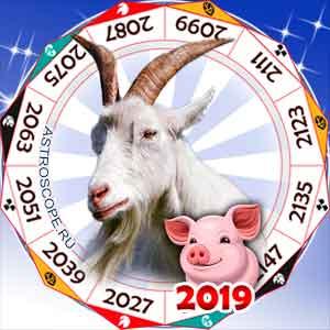 гороскоп для Козы в 2019 год Свиньи
