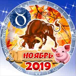 Гороскоп на ноябрь 2019 знака Зодиака Телец