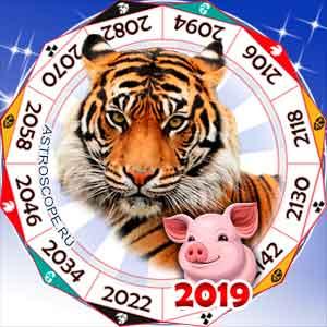 гороскоп для Тигра в 2019 год Свиньи