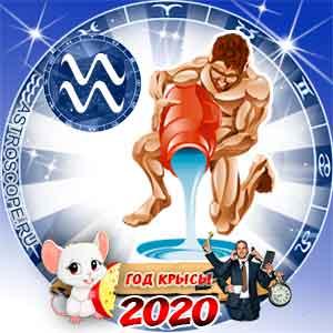 Гороскоп на 2020 год Водолей: карьера