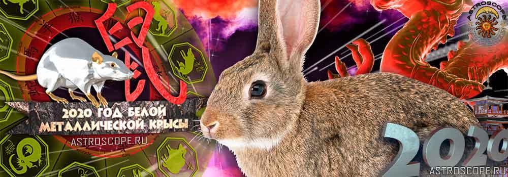Кролик гороскоп на 2020 год Крысы