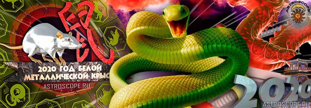 Змея гороскоп на 2020 год Крысы
