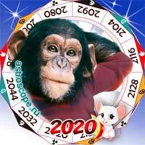 гороскоп для Обезьяны в 2020 год Крысы