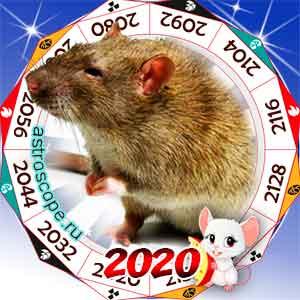 гороскоп для Крысы в 2020 год Крысы