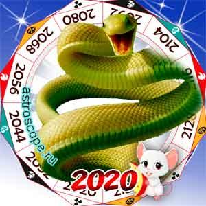 гороскоп для Змеи в 2020 год Крысы