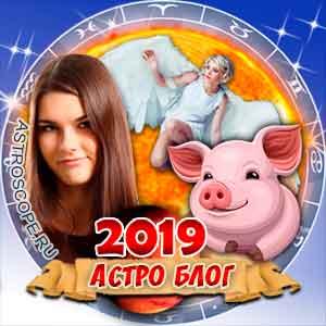 2019 год – символика образа Жёлтой Земляной Свиньи