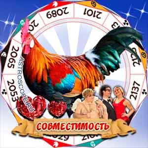 Гороскоп совместимости Петуха с другими знаками