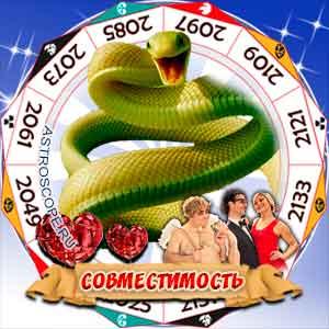 Гороскоп совместимости Змеи с другими знаками
