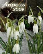 гороскопы на апрель месяц