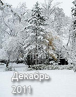 гороскоп на декабрь 2011